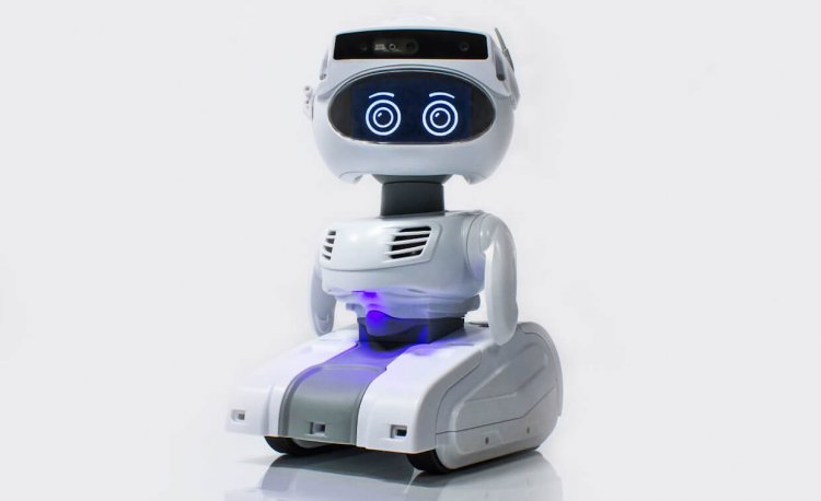 Personal Robotics Will Become An Important New Category