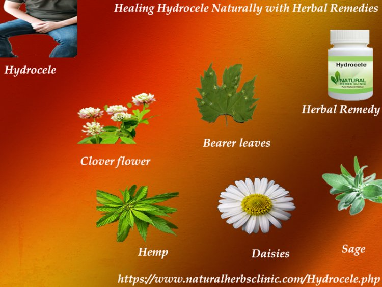 Natural Healing Process of Hydrocele